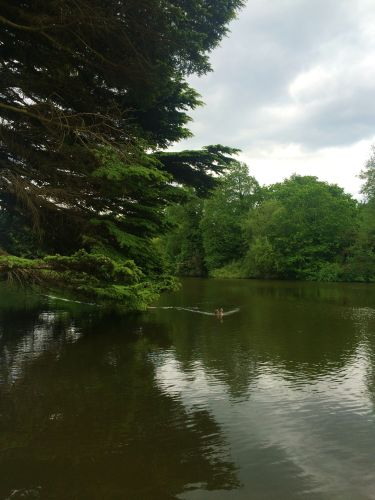 As you walk into the main gates of Osterly Park, you greeting with a tranquil body of water, dotted with various species of birds and other wildlife. Middle Lake also plays host to Canoeing in the Park on Sunday's during the summer months.